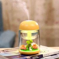 物有物语 usb加湿器 创意微景观加湿器七彩小夜灯家用雾化加湿器USB迷你香薰加湿器