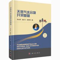 天然气水合物开采基础 科学出版社