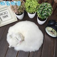 物有物语 猫 毛绒玩具猫咪仿真猫咪玩具模型桌面车饰摆件动物猫咪礼物礼品
