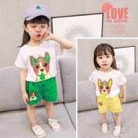 女童洋气夏装0婴儿童1衣服2女宝宝夏季小童运动3岁韩版潮小狗套装