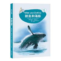 【BF】鲸鱼和海豚-来问我吧