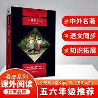 大林和小林 入选小学5-6年级阅读指导目录(2020年版)黑皮阅读升级版