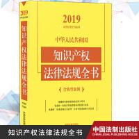 正版现货 2019年版中华人民共和国知识产权法律法规全书 含典型案例及发行监管问答法律法规全书法律工具书籍 中国法制出版社