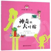 神奇的大叶榕/从课程资源到儿童经验丛书