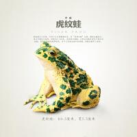 儿童动物玩具青蛙蛇蜥蜴模型冷血动物两栖爬行生物模型