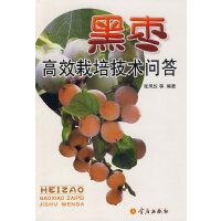 黑枣高效栽培技术问答