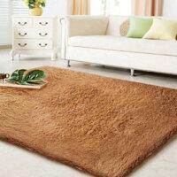 普润 滑加厚丝毛 客厅地毯 茶几地毯 卧室地毯 80*120cm香槟色