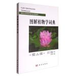 【按需印刷】-图解植物学辞典