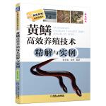 黄鳝高效养殖技术精解与实例