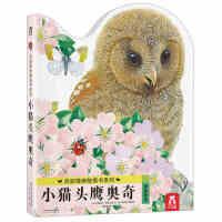 亮丽精美触摸书系列-小猫头鹰奥奇