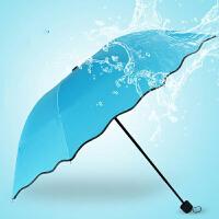 物有物语 雨伞 女士家居遇水开花晴雨伞创意黑胶遮阳太阳伞防紫外线伞韩版清新学生成人雨伞雨具
