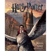 哈利波特3d立体书 英文原版 进口图书 英文立体书绘本 3D手工剪纸书 Harry Potter Pop up boo