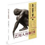 艺用人体解剖(全球畅销30万册DK经典,艺术必备参考,最新版)