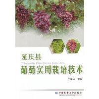 延庆县葡萄实用栽培技术