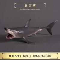 巨齿鲨鲨鱼食人鲨大白鲨玩具儿童仿真实心海洋海底生物玩具模型
