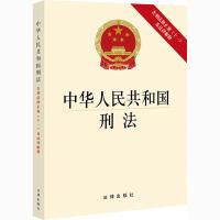 中华人民共和国刑法 含刑法修正案(十一)及法律解释 法律出版社