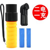 LED迷你强光潜水手电筒充电防水打猎远射户外骑行登山家用
