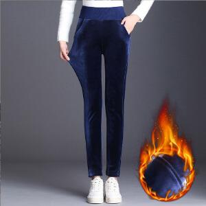 加绒加厚金丝绒螺纹腰打底裤女外穿冬季新款显瘦小脚高腰大码裤子