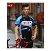 夏季骑行服短袖套装男 排汗透气自行车骑行服短裤男 V16-03男款幻线短套装