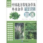 中国北方常见杂草及外来杂草鉴定识别图谱
