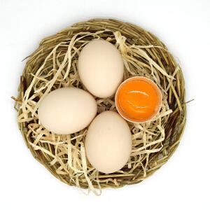 【湖北宜昌农特产馆】宜昌特产 蛋之语 林下散养土鸡蛋 20枚 净重1000g  每枚50克 婴幼儿辅食孕妇月子蛋 只发2天内新鲜蛋