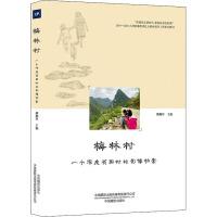 梅林村 一个深度贫困村的影像档案 中国摄影出版传媒有限责任公司