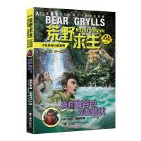荒野求生少年生存小说拓展版12 猎豹幽谷的双重潜伏