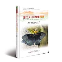 浙江天目山蝴蝶图鉴