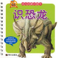 幼儿启蒙识图卡:识恐龙