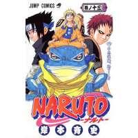 火影忍者 Naruto Vol. 13 (Naruto) (in Japanese) 日文原版