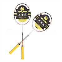 无极风体育用品羽毛球拍全碳素羽毛球拍生肖狗幸运拍