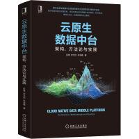 云原生数据中台 架构、方法论与实践 机械工业出版社