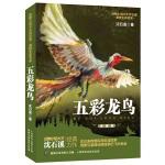 沈石溪动物小说感悟生命书系-五彩龙鸟