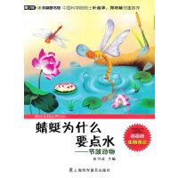 蜻蜓为什么要点水―节肢动物