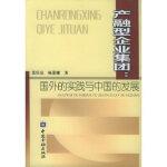产融型企业集团:国外的实践与中国的发展