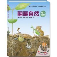 尚童自然之友:翻翻自然系列-《地下世界》(看得见的美好,看不见的奇妙!16开结实大卡板,96个小翻窗,小手翻翻,探索自