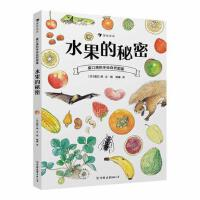 盛口满的手绘自然图鉴系列:水果的秘密+蔬菜的植物学+谷物的智慧+餐后骨头大考察(套装共四册)