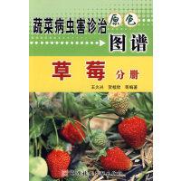 草莓分册/蔬菜病虫害诊治原色图谱