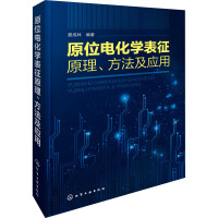 原位电化学表征原理、方法及应用 化学工业出版社