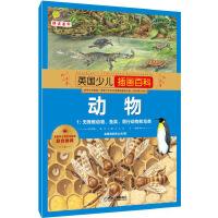 英国少儿插画百科 动物1 无脊椎动物,鱼类,爬行动物和鸟类