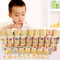 【限时抢】木丸子儿童益智玩具100片 双面早教汉字多米诺认知识字木制积木