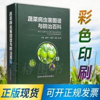 2021版 蔬菜病虫害图谱与防治百科 蔬菜病虫害原色图鉴 番茄 黄瓜 辣椒 蔬菜种植技术书籍
