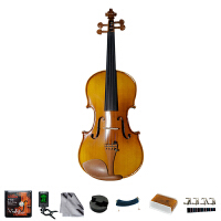 Saysn思雅晨小提琴儿童成年人初学者入门练习考级小提琴哑光花纹V-009 配肩托4/4 3/4