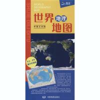 世界地理地图 中国地图出版社