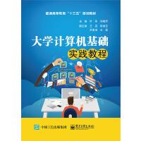 大学计算机基础实践教程(普通高等教育十三五规划教材)