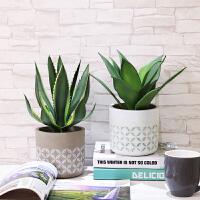 仿真植物装饰北欧风格创意家居室内摆件卧室花桌面假盆栽摆设