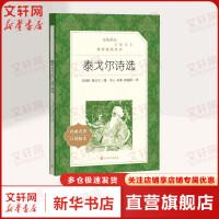 泰戈尔诗选(经典名著口碑版本) 人民文学出版社