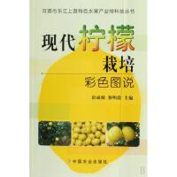 现代柠檬栽培彩色图说/河源市东江上游特色水果产业带科技丛书
