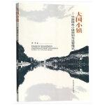 大国小镇——中国特色小镇规划与运营模式