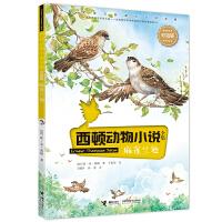 西顿动物小说:麻雀兰迪(彩绘版)